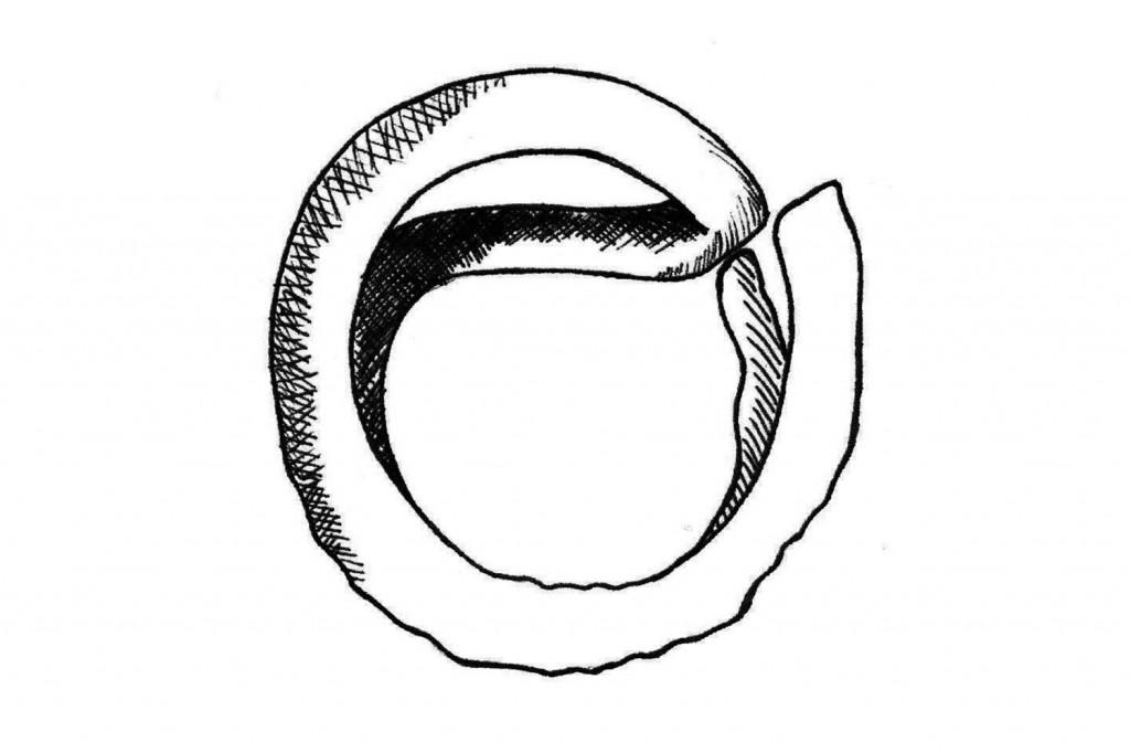 sussex-loop-illustration_wide.jpg