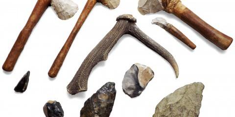 Prehistory Day